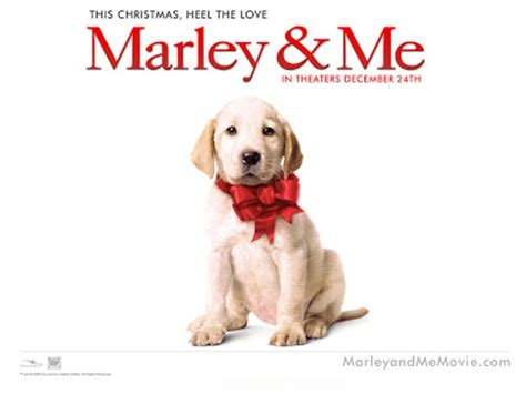 The Blind Side: Marley and Me