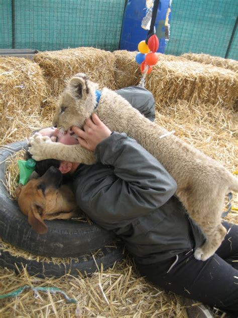 A Scary Petting Zoo (38 pics) – 1Funny