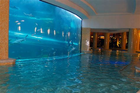 These Are Probably The Best Swimming Pools In The World