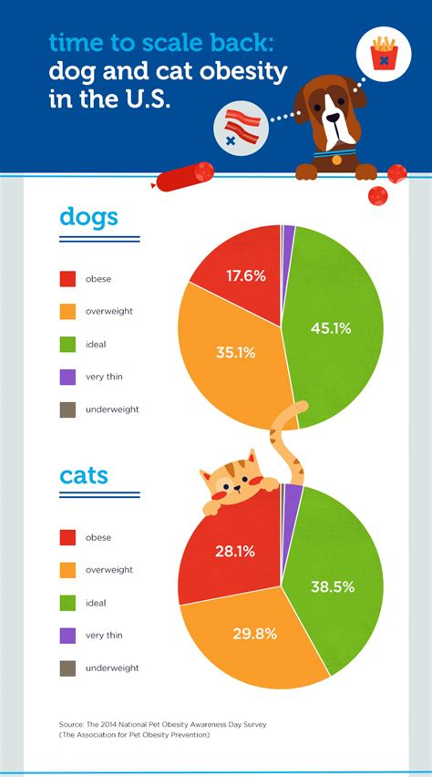 Lovable Dogs Is Your Pet Obese? Surprising Facts About