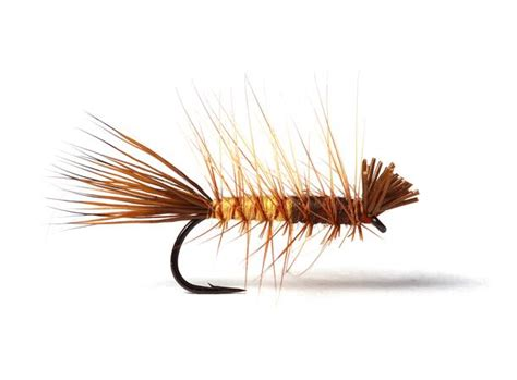 Super Dyret Brown/Yellow #11 - Guideline AS