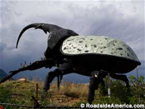 Herkimer, the World's Largest Beetle, Colorado Springs